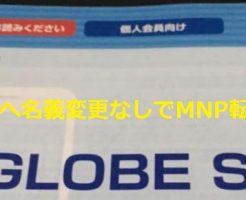 BIGLOBE SIMは追加SIMへ名義変更無しでMNP転入可能